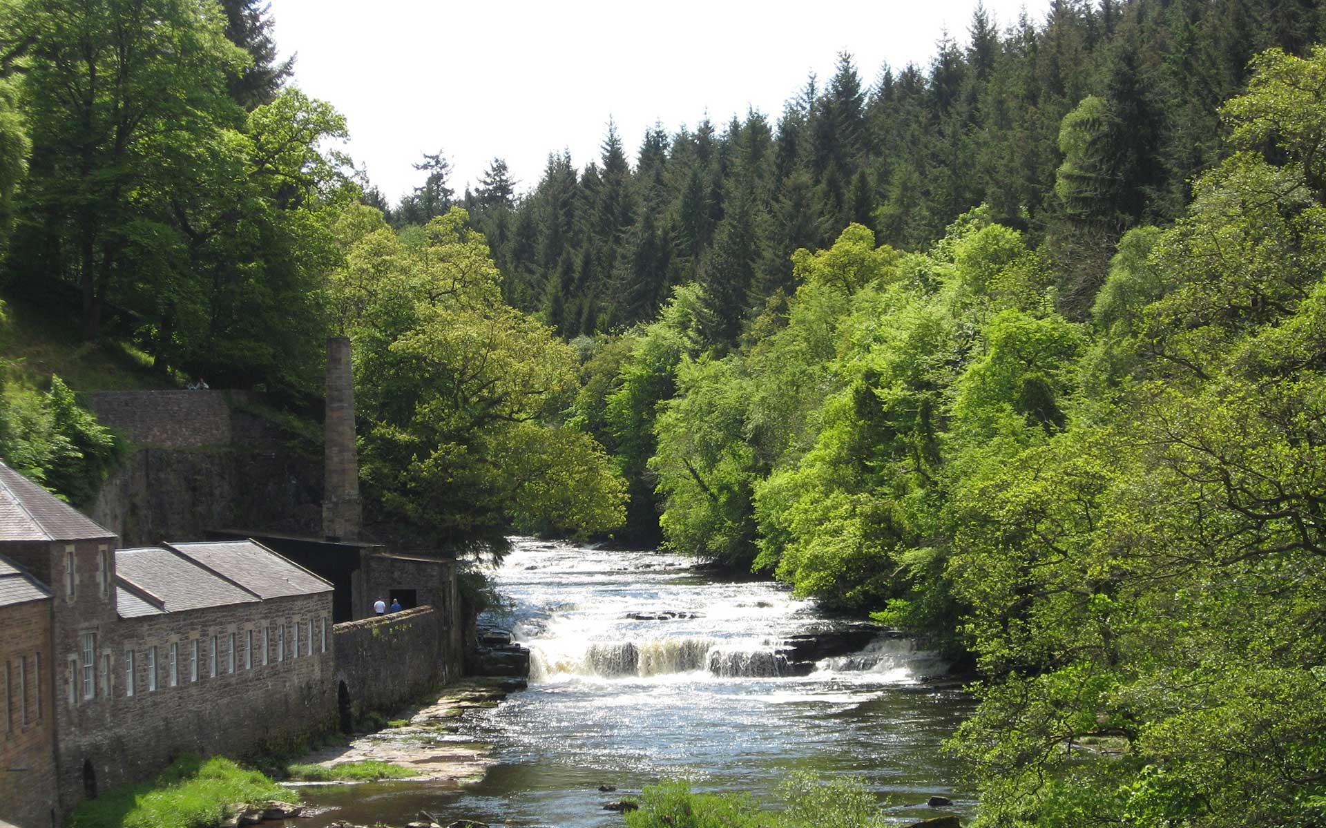 Lanarkshire river in a forest